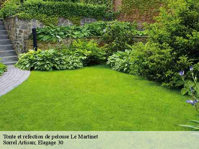 Tonte et refection de pelouse  le-martinet-30960